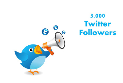 Give you 3,000 High Quality Twitter followers