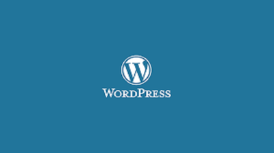 Set up a Wordpress site with your Theme
