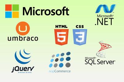 Troubleshoot errors/adjustment built on ASP.Net or CMS (Umbraco, Nopcommerce, etc.)