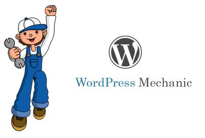Provide 30 mins of maintenance / fixes to your WordPress website