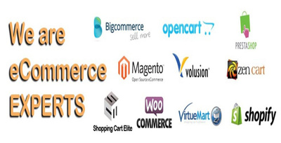 Your  Ecommerce Virtual Assistant