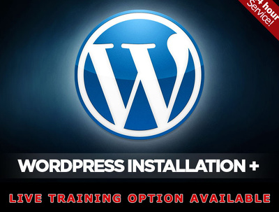 Install Wordpress  your Hosting (24 hr installation available)