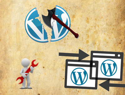 Fix any wordpress related issue