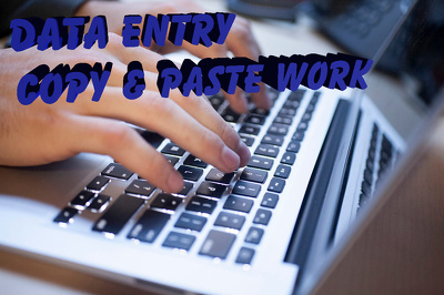 Do 3 Hours of data entry work