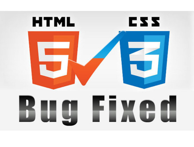 Fix one HTML /  Css issue on your Web page / Website Page