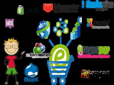 Develop basic e-Commerce / online store fully responsive