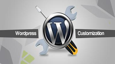 Customize any Wordpress Theme