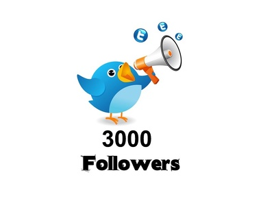 Add 2000 Permanent Twitter followers to increase your SEO