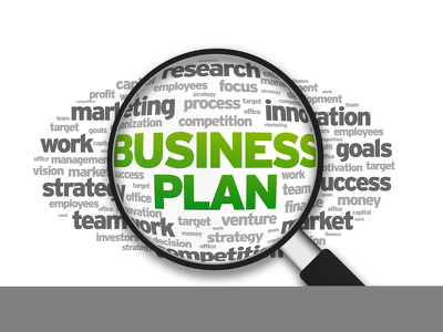 Develop a business plan ( by professional MBA  )