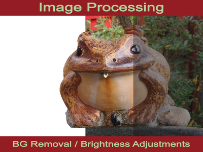 process your images in Photoshop