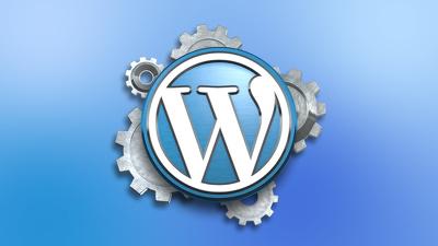 Fix any WordPress plugin  issues