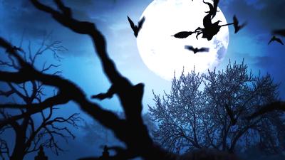Create 5 fantastic halloween video