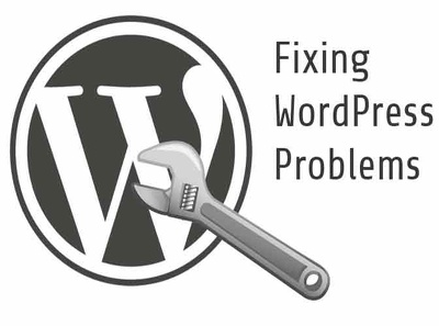 Fix any WordPress issue or bug within 24/7