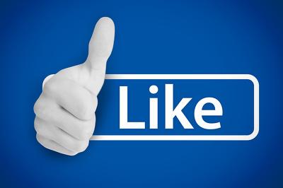 Provide 1000 Social Media Fans or 3000 HQ Twitter Followers