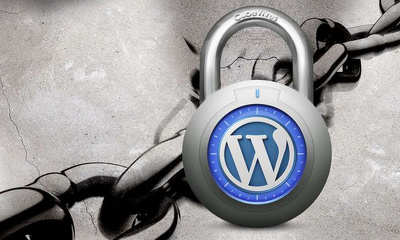 Secure Wordpress Sites from Hackers with 176 rock solid security measures