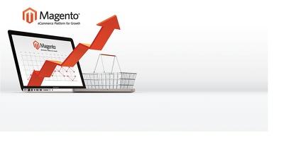 Prevent fraud Magento merchants