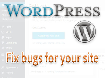 Fix any Wordpress issue on your website