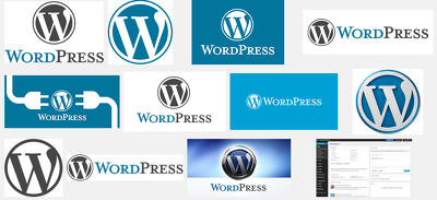 Be your experienced Wordpress developer installing new themes and plugins