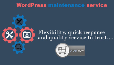 WordPress Updates, Backups , Maintenance Support