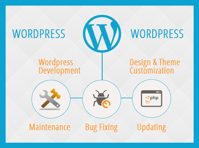 Offer 1 Hour work on Maintenance / Updating / Fixing Wordpress Websites
