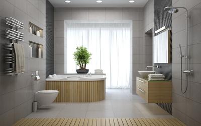 Deliver a 3d Interior Visual