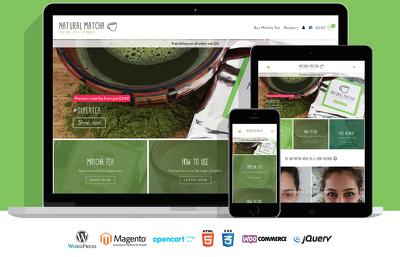Build you a bespoke, responsive and custom build Wordpress Website