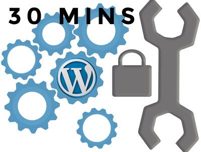 Provide 30 minutes of maintenance / web development on your WordPress site
