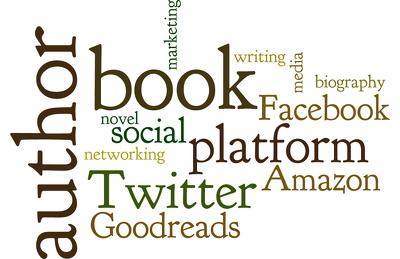 Help you set up your author platform online (using social media etc)
