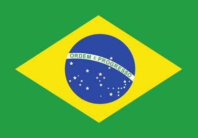 Create 100++ backlinks on Brazilian com br blog domains