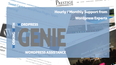 Offer Monthly Wordpress Web Assistance