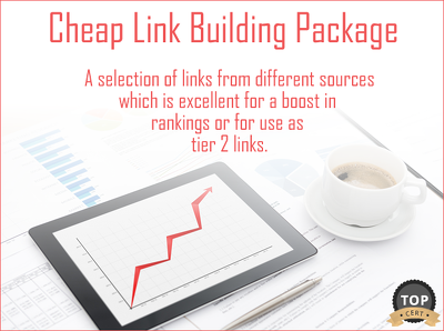 Provide a Cheap Link Building Diversity Package