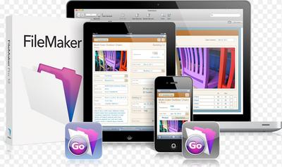 Help you write FileMaker script