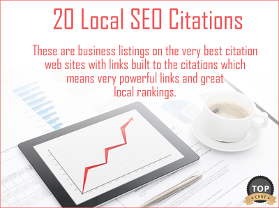 Build 30 Local SEO Citations