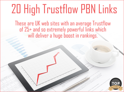 Build 20 High Trustflow PBN Links