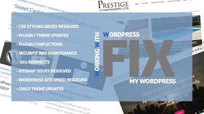 Fix my WP Problem - Working with WordPress