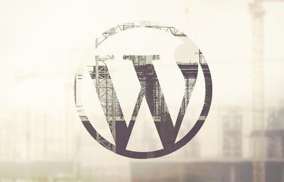 Design & Develop WordPress CMS or eCommerce Website
