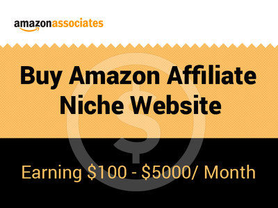 Make money  online with amazon affiliate profitable website
