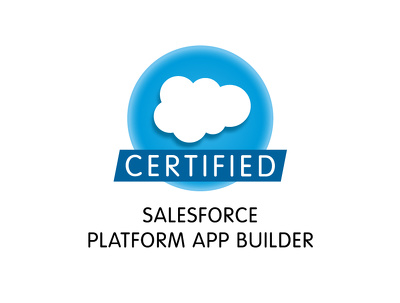 Provide 6 hours of Salesforce consultation and/or customization