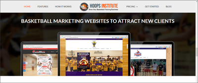 Make a professional wordpress website