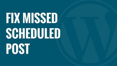 Provide updates/ customization to your wordpress based website