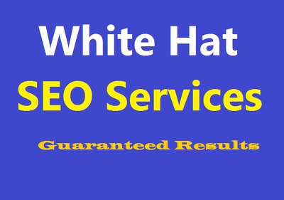 Provide White Hat SEO Services