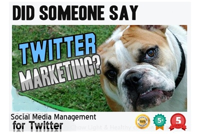 Twitter Marketing Campaign - Manage And Promote Your TWITTER Profile