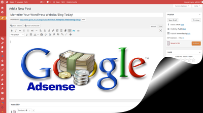 Setup your Wordpress website in effective way with Adsense ads