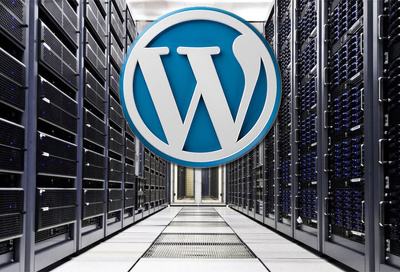 Create a professional Wordpress and give you one year FREE hosting and FREE domain