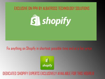 Do 1 shopify customization