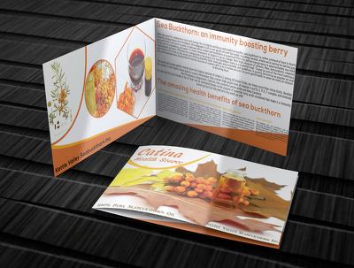 Design a professional Flyer ,Brochure ,Poster