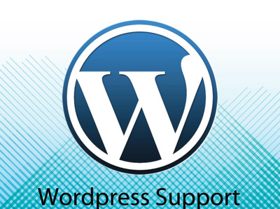 Work for one hour on any wordpress troubleshooting assignment