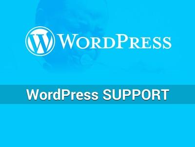 Provide Wordpress Support and Maintenance