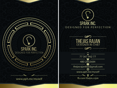 Design the best professional looking business card / visiting card