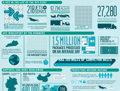 Design a professional infographic